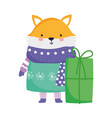 merry christmas fox with warm clothes and gift box vector image