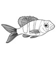 reef fishes sketch hand drawn vector image vector image
