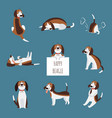 the various poses cute beagle dog or puppy set vector image vector image