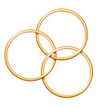 three linking metal rings for showing magic trick vector image vector image