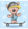 Bear with skateboard vector image