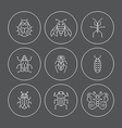 Bugs Insects vector image vector image