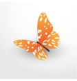 butterfly web flat icon vector image vector image