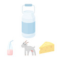 goat a piece of cheese and other products milk vector image vector image