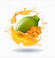 papaya juice splash realistic fruit icon vector image vector image