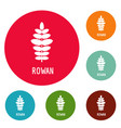 rowan leaf icons circle set vector image