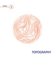 topography map vector image vector image