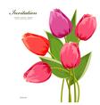 tulip2 vector image vector image