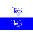 typography of the usa texas states handwritten on vector image