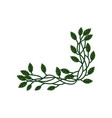 Branch with green leaves natural design element