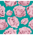 color rose pattern vector image
