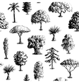 Hand drawn tree pattern vector image vector image
