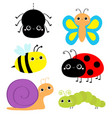 insect set ladybug ladybird green caterpillar vector image vector image