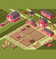 isometric a farm vector image