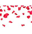 red sakura or rose falling petals vector image
