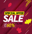 autumn sale special offer up to sixty percent vector image vector image