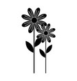 cute sunflower plant icon vector image vector image