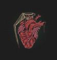 heart grenade drawing vector image vector image