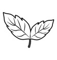 leaves with stem icon image vector image vector image