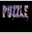 Puzzle Pieces Background vector image