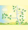 sunny rural landscape with branches birch trees vector image vector image