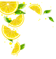 Background of Lemon and Juice Splashes vector image vector image