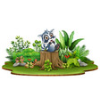 cartoon happy raccoon sitting on tree stump with g vector image vector image