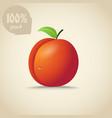 Cute orange peach vector image vector image