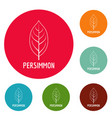 persimmon leaf icons circle set vector image vector image