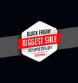 stylish black friday season sale background vector image