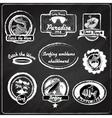 Surfing emblems chalkboard vector image