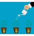 watering money flowers vector image