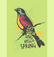 colorful bird spring poster vector image