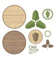 Oak Acorn Wood vector image vector image