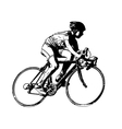 race bicyclist vector image vector image