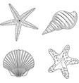 stylized shell zentangle doodle vector image