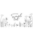 background meadow flowers vector image vector image