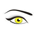 Beautiful yellow eyes vector image vector image