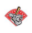 Bulldog Baseball Hitter Batting Cartoon vector image vector image