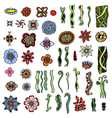 collection with various flowers vector image