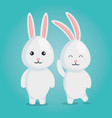 cute rabbits couple characters vector image vector image