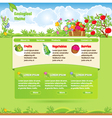 Ecological template for web site vector image vector image
