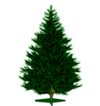 Empty Christmas tree vector image vector image