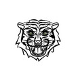 hand drawn tiger head sketch vector image vector image