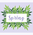 hello spring lettering banner foliage leaves vector image vector image