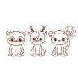 kawaii animals design vector image vector image