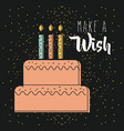 make a wish pink cake with candles burning dark vector image