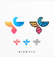 modern bird colorful template vector image vector image