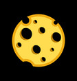 porous cheese round form with holes vector image