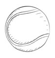 sport ball sketch vector image